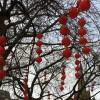 Lampionnen in de straten van Manchester